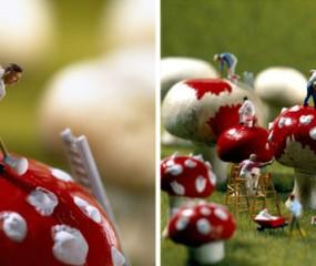 Fotoserie: miniscule mensjes in de foodwereld
