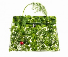 De Hermès Kelly bag in etenswaren
