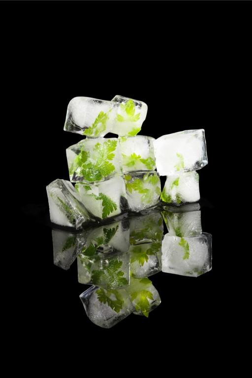 Stock ijsblokjes icecubes