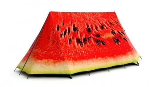 field-candy-tent