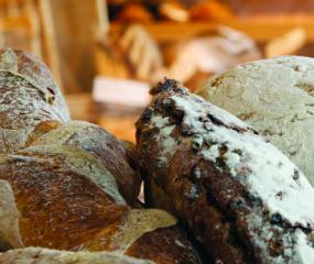 Video: een kijkje in de bakkerij van Vlaamsch Broodhuys