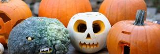 DIY: pompoenen versieren voor Halloween