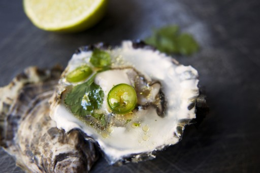 oester1