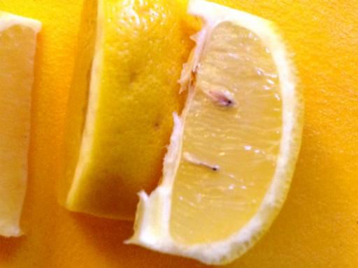 citrus5