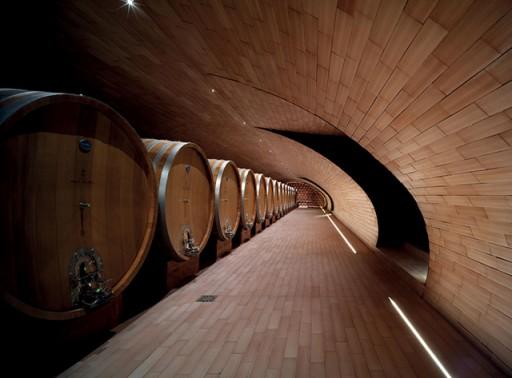 wijngaard-6