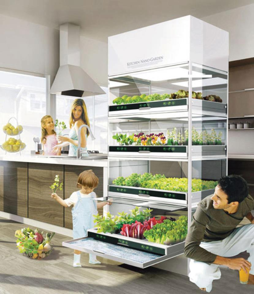 Keuken Verbouwen Amsterdam : Toffe trend: groenten en fruit verbouwen in je eigen keuken – Culy.nl