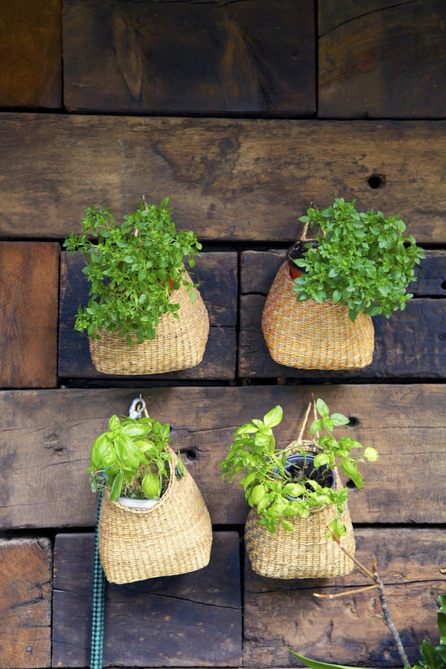 planten op balkon stock