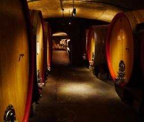 Culy's Mr. Vino ontdekt… wijn in Südtirol - deel 1