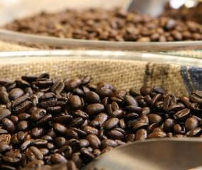 Prachtig filmpje over koffie