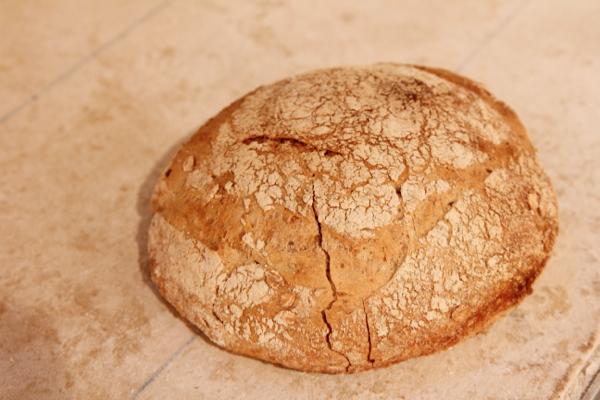 temperatuur brood bakken oven