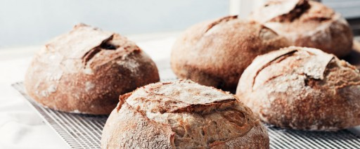 breadrack_1