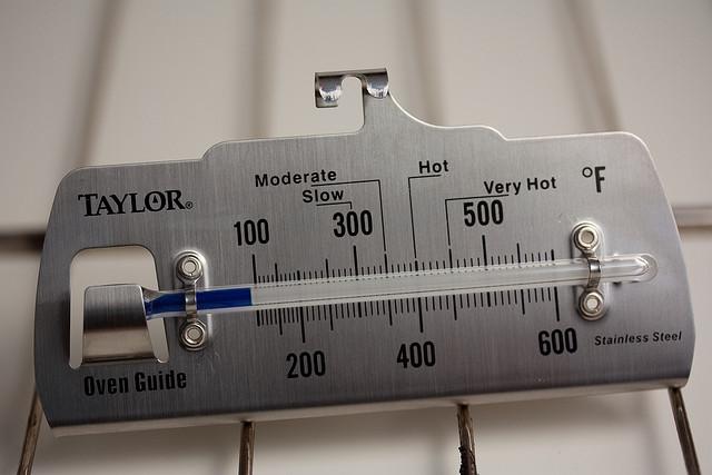 термометр для духовки газовой плиты купить