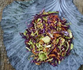 Winters bijgerecht: coleslaw met rode kool en spruitjes