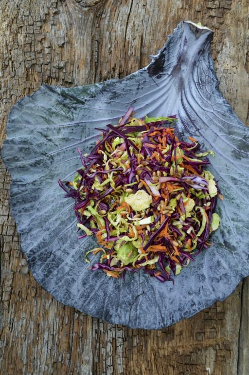 Spruitjes stock coleslaw