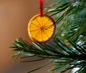 Slimme tip: zo klimt je kat nooit meer in de kerstboom