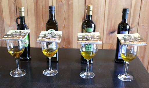 olivomio tasting