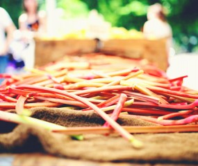 Alles over rabarber, onze favoriete seizoensgroente