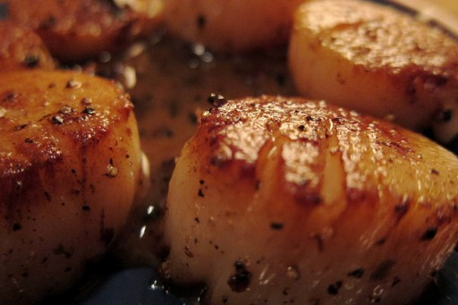 Vermout - coquilles