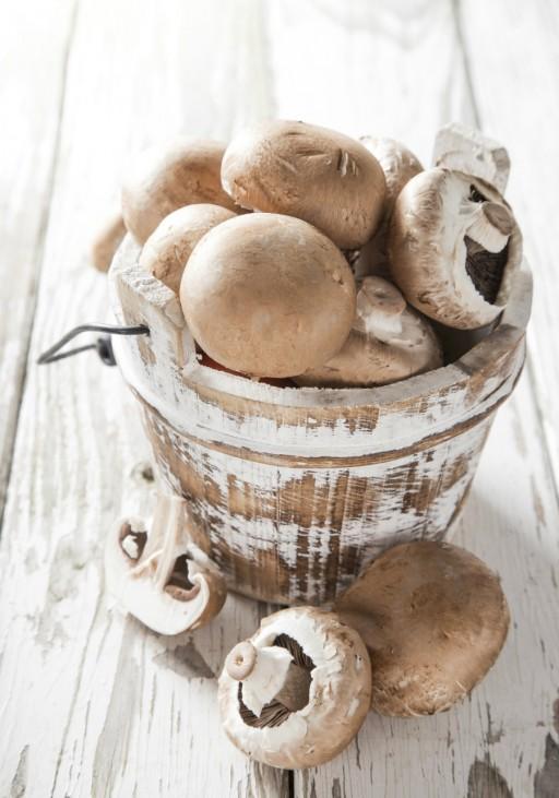 Kastanje champignons paddenstoelen stock