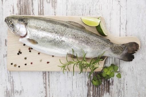 Stock hoe fileer je vis