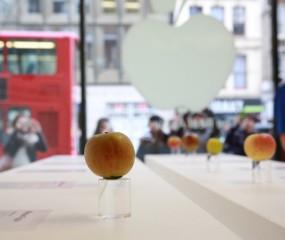 Bij 'The Real Apple Store' in Londen vind je... échte appels!