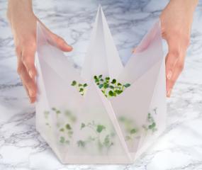 Groei je eigen microgroenten met de Microgarden