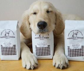 Zijn hondencafés de nieuwe trend?