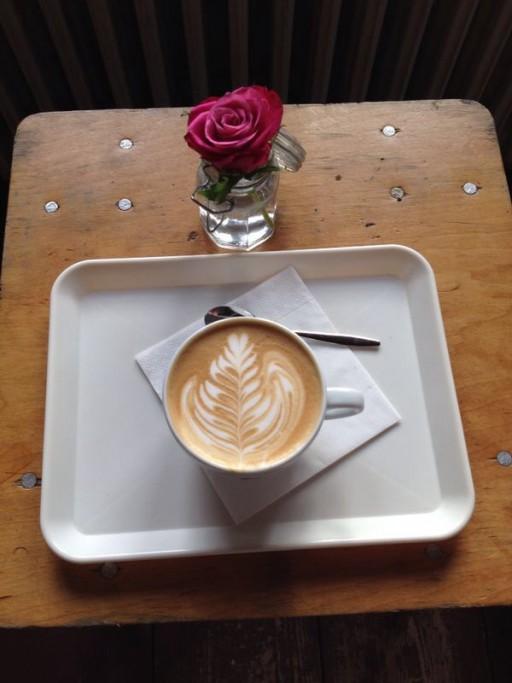 Koffie roos