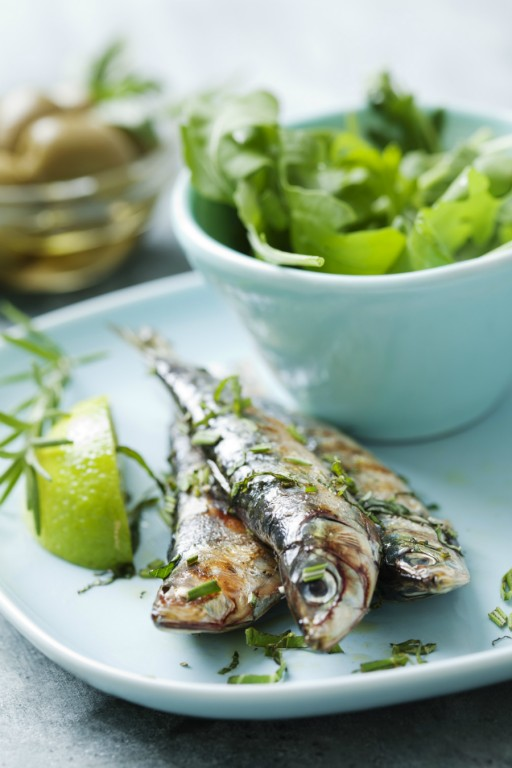 Sardines vis stock