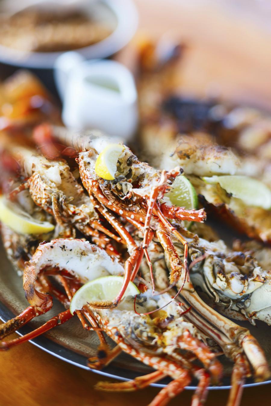 The Louisiana Lobsters...