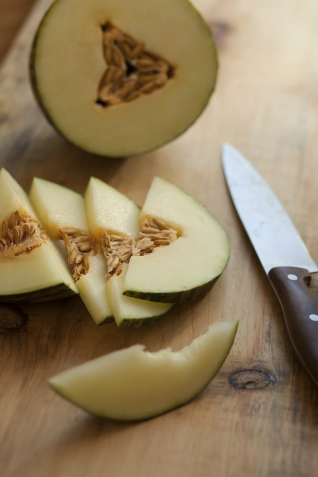 Meloen stock