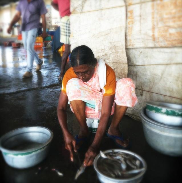 Vis op de markt