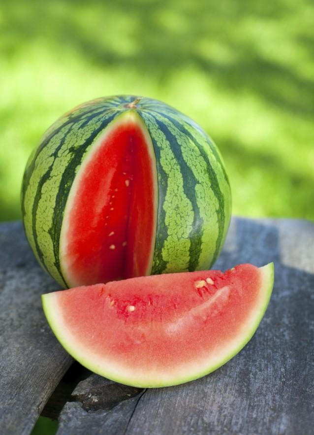 Watermeloen stock