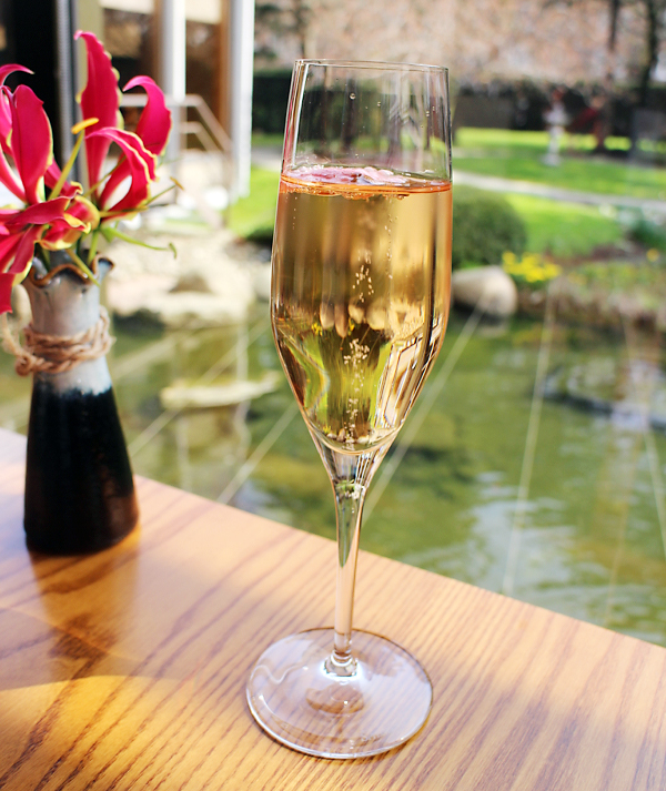 Het aperitief: champagne met kersenbloesem