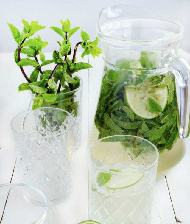 Mojito-pitcher-kan-stock2-638x987