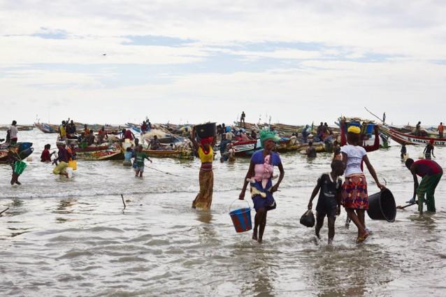 The gambia foto copyright David Loftus, dagvangst binnenhalen