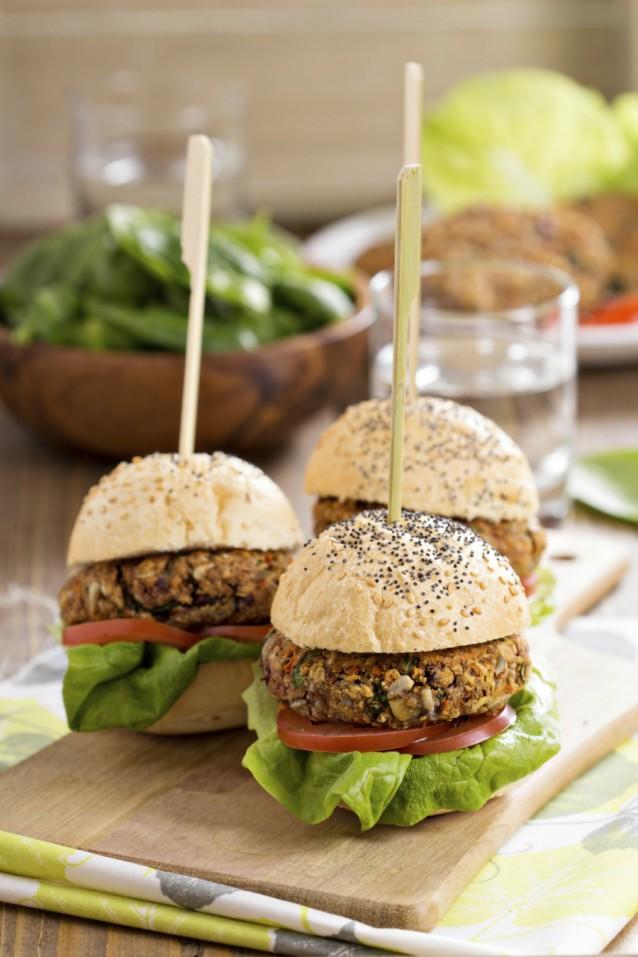 Vega burger stock7