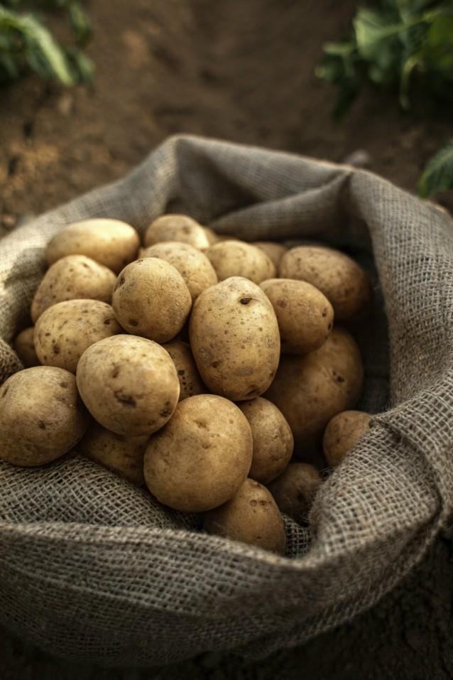 Aardappels stock