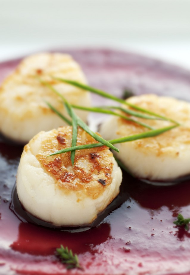 coquilles stock3