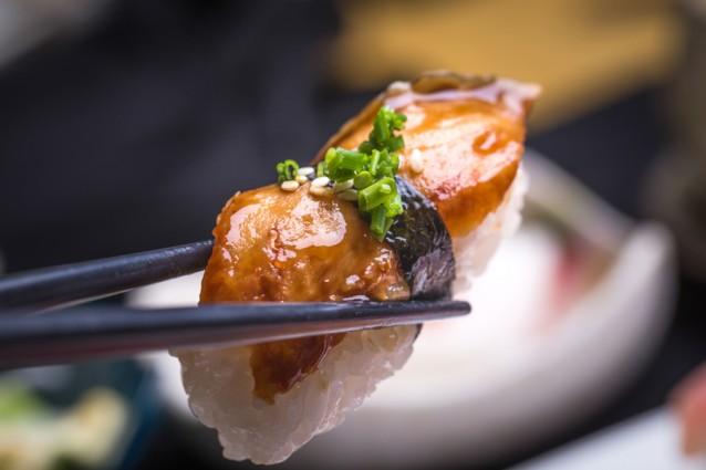 Unagi paling sushi stock