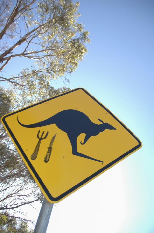 Kangoeroevlees stock
