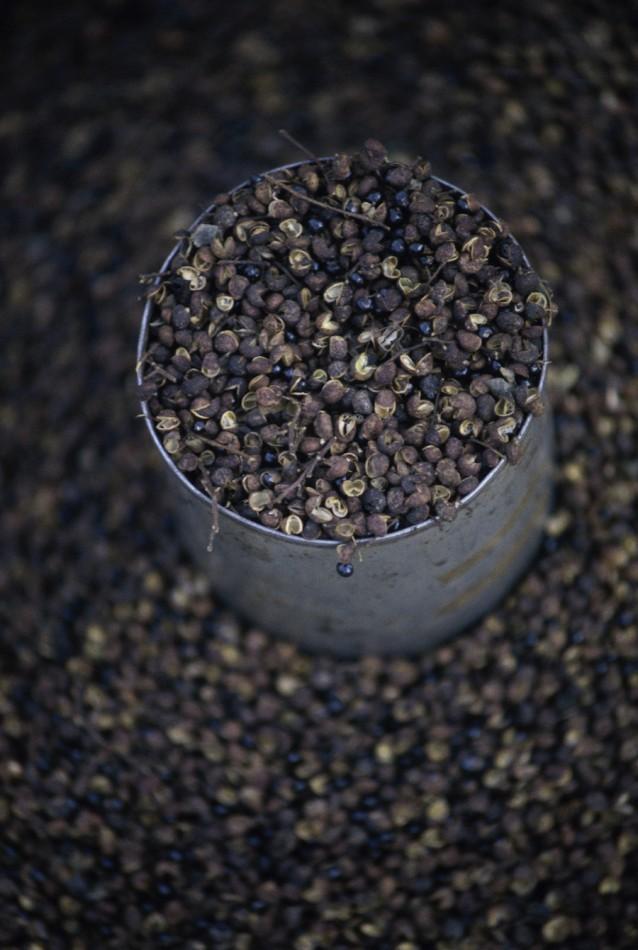 zwarte peper stock