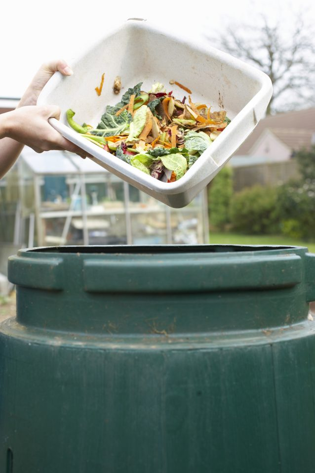stock afval food waste