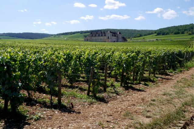 bourgogne-mr-vino0027