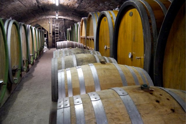 wijnkeldermarkusmolitor4