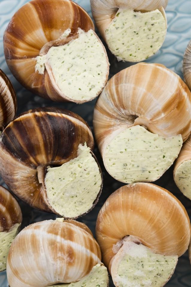 Stock escargot