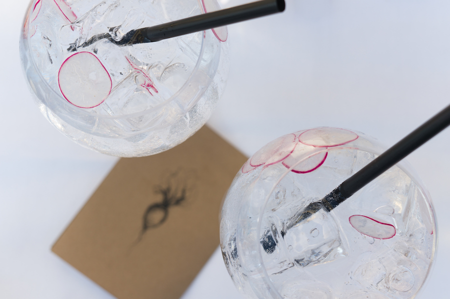 Simple gin-tonic radijs