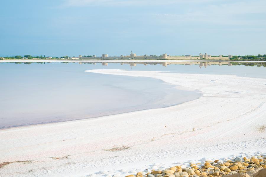 zout La Baleine Aigues-Mortes