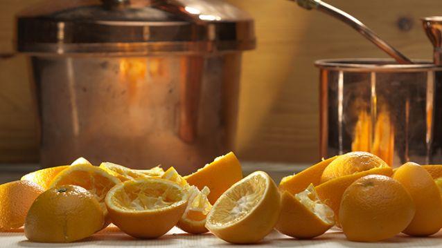 VERSCHIL - sinaasappelschillen destilleren RUIK