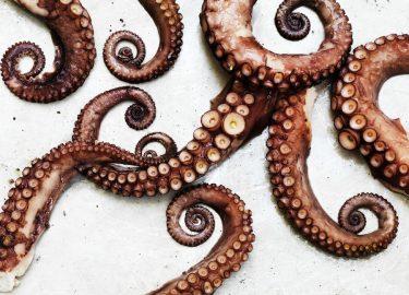pulpo alla gallega octopus op z n spaans culy nl